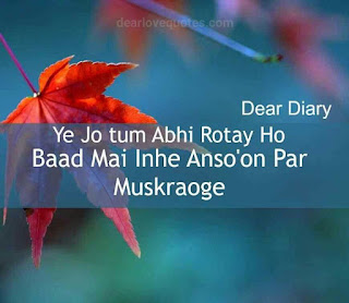 dear diary se images shayari and love quotes-19