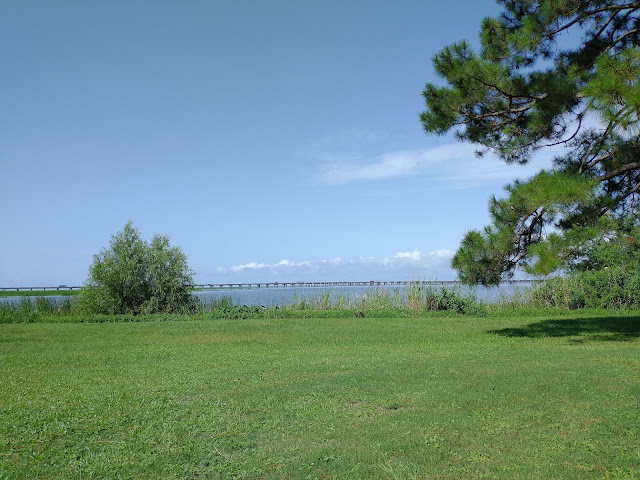 Meaher State Park Campground, Alabama. View from site 7. July 2021.