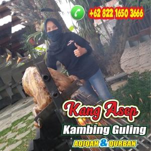 Catering Wisata Kambing Guling Kota Bandung,catering kambing guling bandung,kambing guling bandung,kambing guling kota bandung,kambing