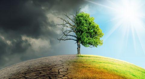 Pentingnya Energi Terbarukan Untuk Atasi Krisis Perubahan Iklim