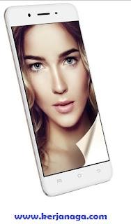 Harga Hp Vivo Y55 Dan Review Smartphone Terbaru - Update Hari Ini 2020