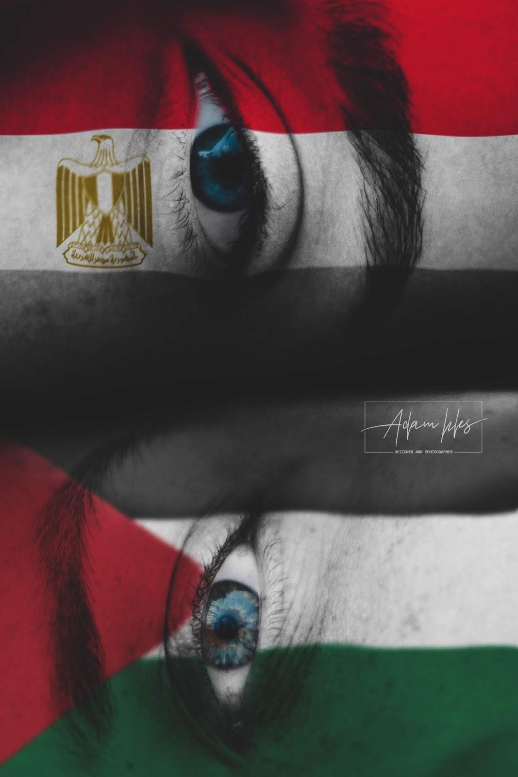 علم مصر وعلم فلسطين