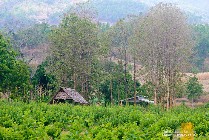 Scenic View to Chinese Village and Mo Paeng Waterfalls in Pai, Thailand