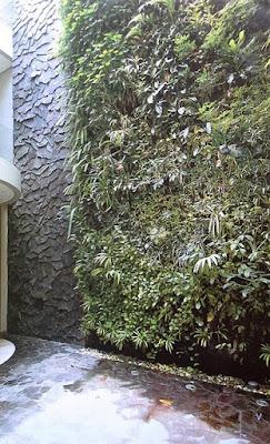Tukang Taman Vertikal Surabaya | Vertical Garden 2