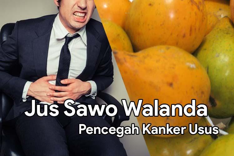 Jus Sawo Walanda Untuk Obat Alami Mencegah Kanker Usus