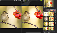 InPixio Photo Editor v10.4.7625.29543 Full version