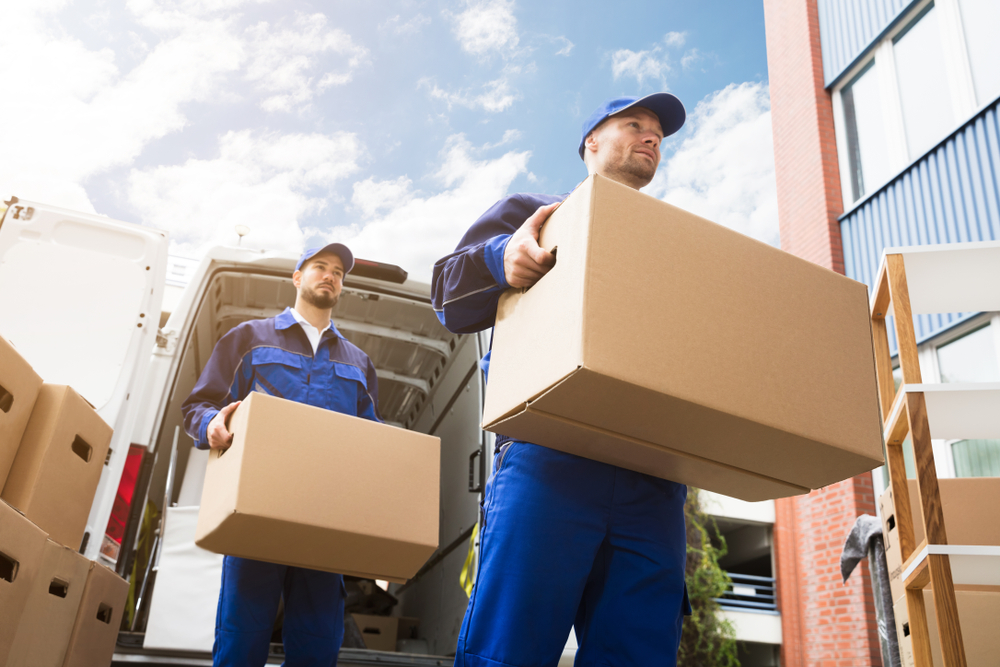office removalist Newcastle