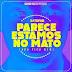 BAIXAR MP3 || DJ Tayob - Parece Estamos no Mato (Não Fica Bem) || 2019