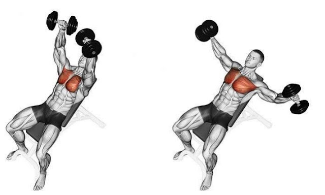 Men Who Want To Develop A Stronger, Bigger , And Wider Chest Should Do This Workout