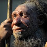Причиной вымирания неандертальцев стал голод и холод