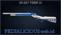 M1887 Executor
