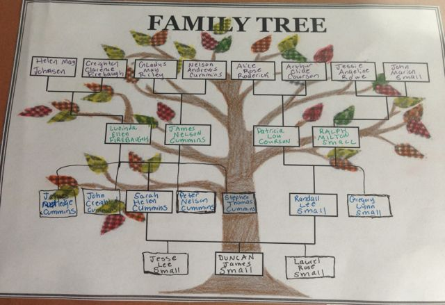 examples of family tree projects