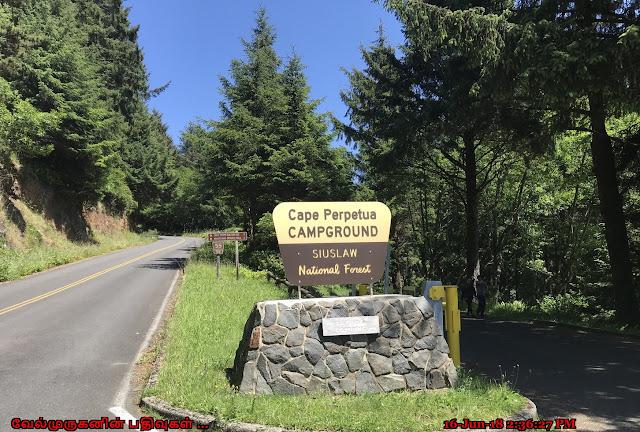 Cape Perpetua Siuslaw National Forest