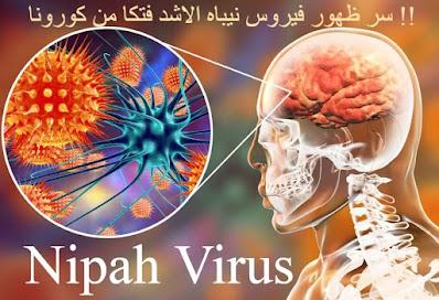 سر ظهور فيروس نيباه الاشد فتكا من كورونا