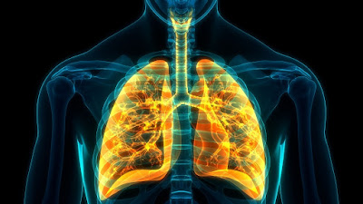 Omalizumab Therapy Reduces Fibrocyte Activation in Patients with Severe Allergic Asthma