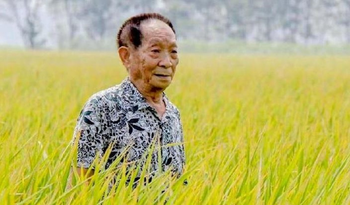 Renowned Chinese agronomist Yuan Longping died