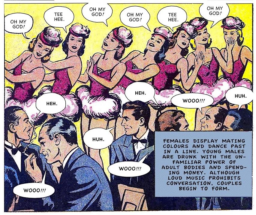 mating dance, nightclub, comedy