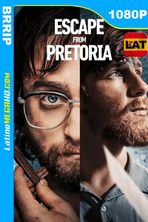 Fuga de Pretoria (2020) Latino HD 1080P ()
