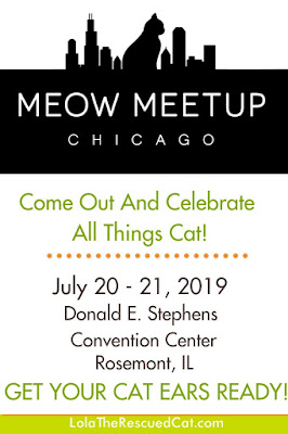 Meow Meet Up Chicago