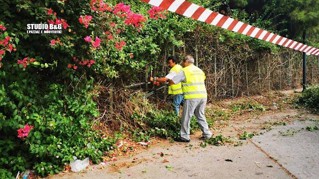 Ναύπλιο: Συνεχίζονται επί μέρες οι εργασίες καθαρισμού και περιποίησης στην Αρβανιτιά