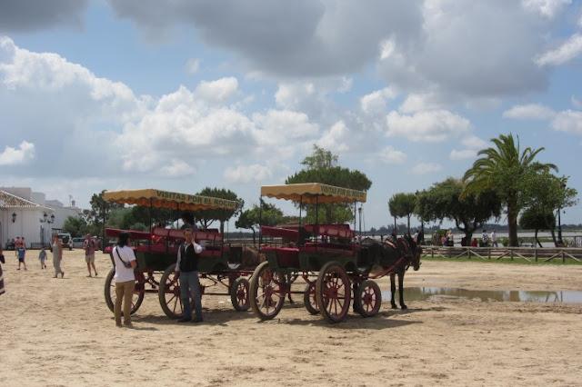 rijden met paard en wagen bij El Rocio, Spanje