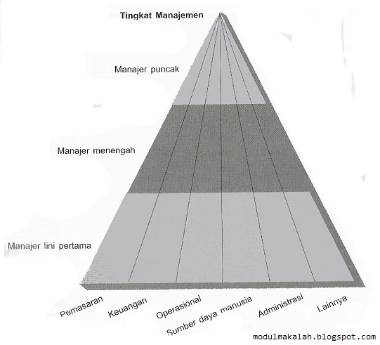 Gambar 2: Jenis manajer berdasarkan tingkat dan bidang_