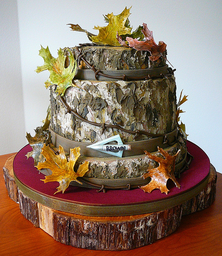 Grooms Wedding Cake Ideas: Special Day Cakes: Amazing Camo Birthday Cake Decorations