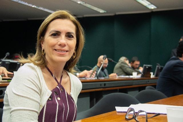 Rosana Valle é a deputada federal  que melhor representa a Região