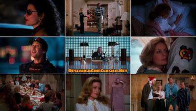 Capturas: ¡Socorro! Ya es Navidad (1989) National Lampoon's Christmas Vacation