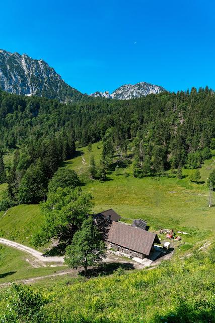 Almwanderung Inzell | Bergwald- Erlebnispfad - Frillensee - Steineralm 14
