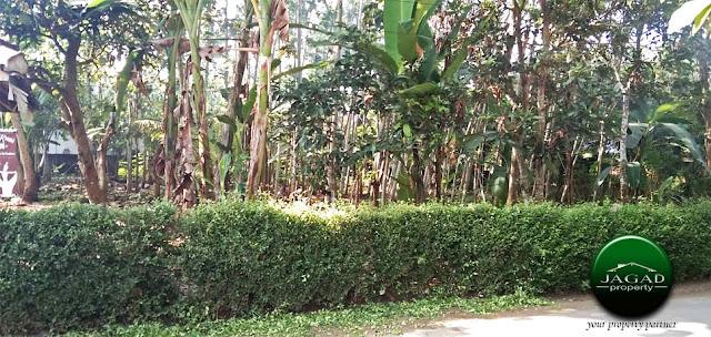 Tanah Pekarangan jalan Godean Km 18