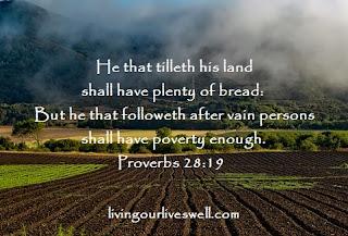 Proverbs 28:19