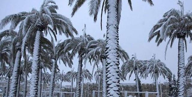 Χιόνια στην Σαουδική Αραβία ακόμα και στην έρημο (βίντεο)