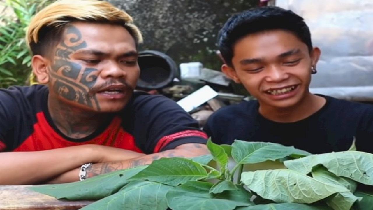 Nekat Mukbang Mie Rebus Pakai Daun Kecubung, Dua Pria Ini Halusinasi 3 Hari, Bikin Melongo
