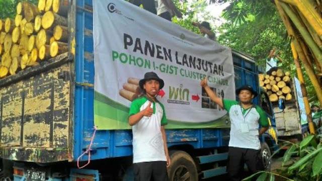 foto panen jabon i-gist