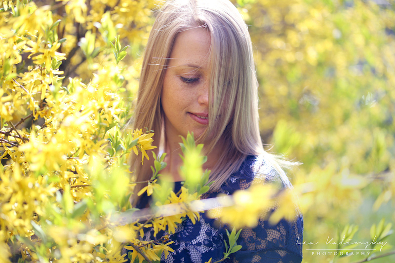 gelbe Blumen Portraitfoto