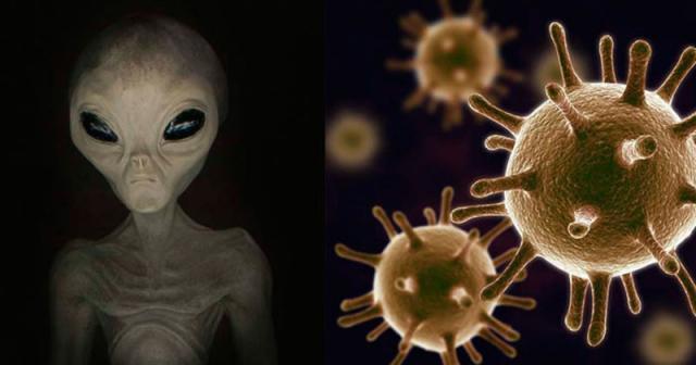ΜΕΛΕΤΗ ΑΝΑΚΑΛΥΠΤΕΙ ΕΞΩΓΗΙΝΟ DNA ΣΕ ΑΝΘΡΩΠΙΝΟ ΓΟΝΙΔΙΩΜΑ