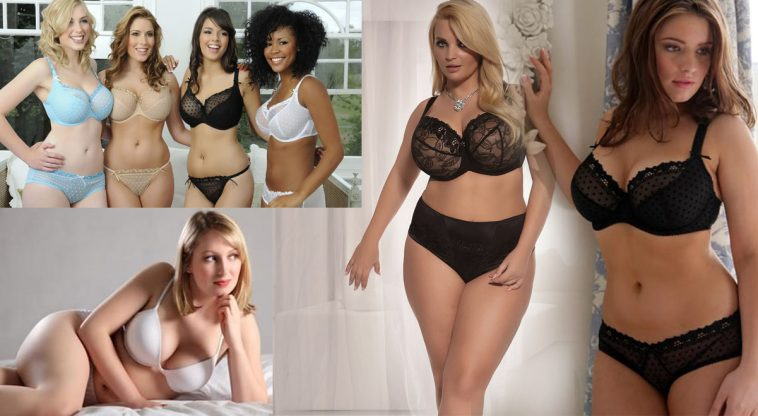Here are the 5 Reasons Why Curvy Women Should Be Your First Choice in Bed!
