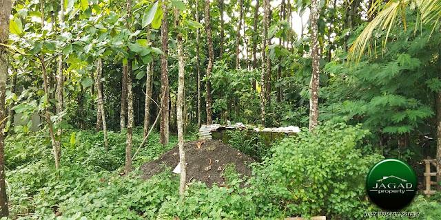 Tanah jalan Kaliurang Km 12,5 dekat Kampus UII