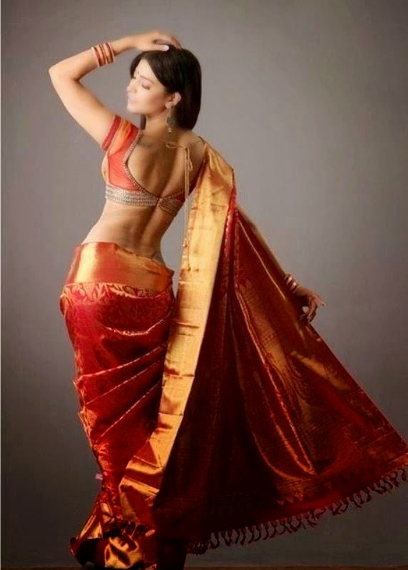 Shruti Haasan sexy back waist show in Fancy Saree