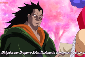 One Piece 880 Sub Español Online Completo HD