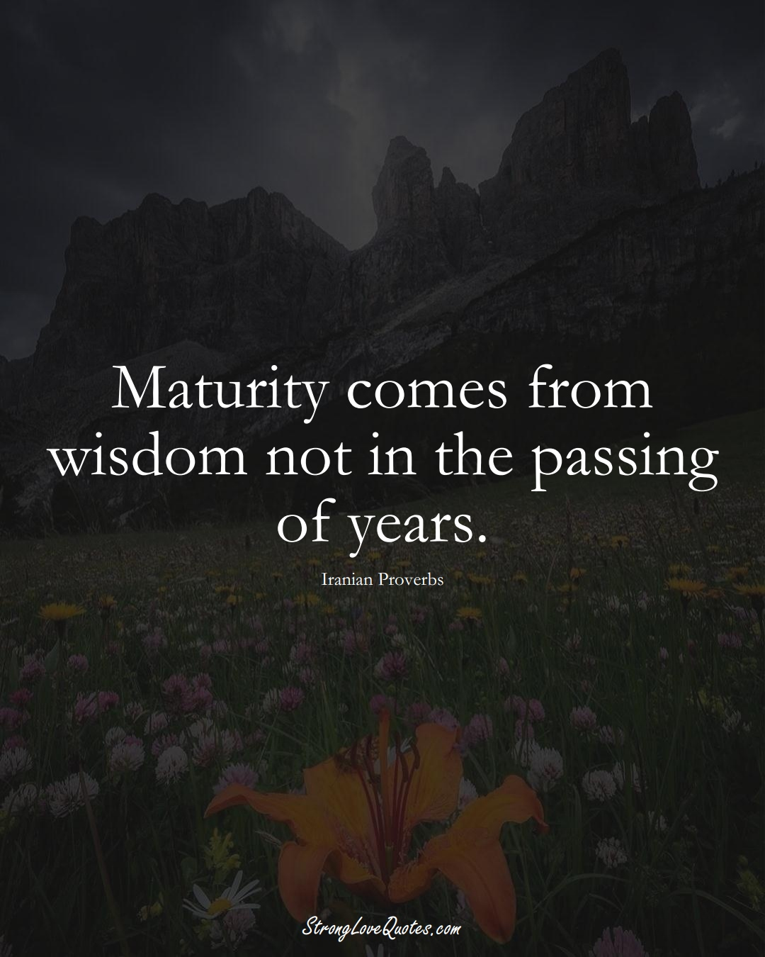 Maturity comes from wisdom not in the passing of years. (Iranian Sayings);  #MiddleEasternSayings
