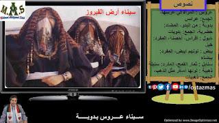 شرح نص سيناء أرض الفيروز - نصوص الصف الثاني الإعدادي الفصل الدراسي الأول