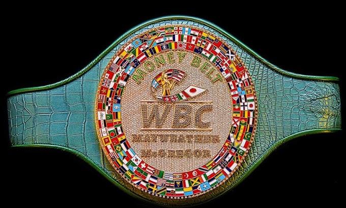"Mayweather VS McGregor: Winner will go home with a 24-karat gold, $1million ""Money Belt"""