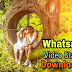 2500+ Funny WhatsApp Video Status Download | Status Video