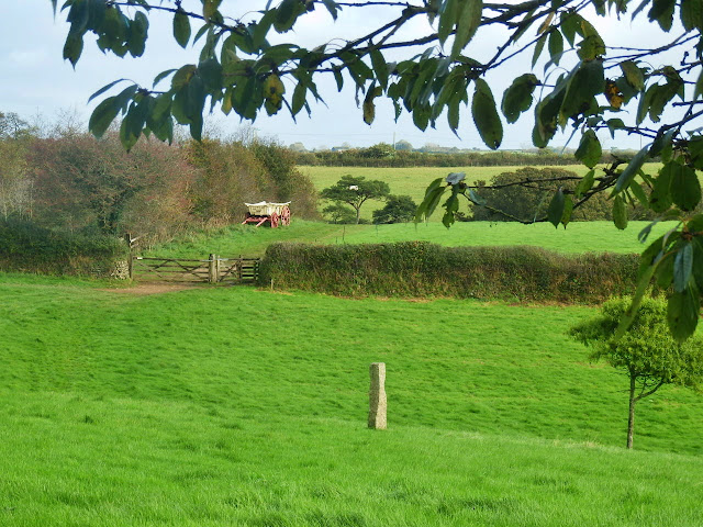 Green fields and traditional hay wagon at Lost Gardend of Heligan