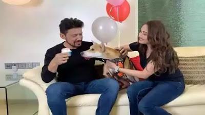 Madhuri Dixit celebrating Husband birthday and her dog gone crazy for cake