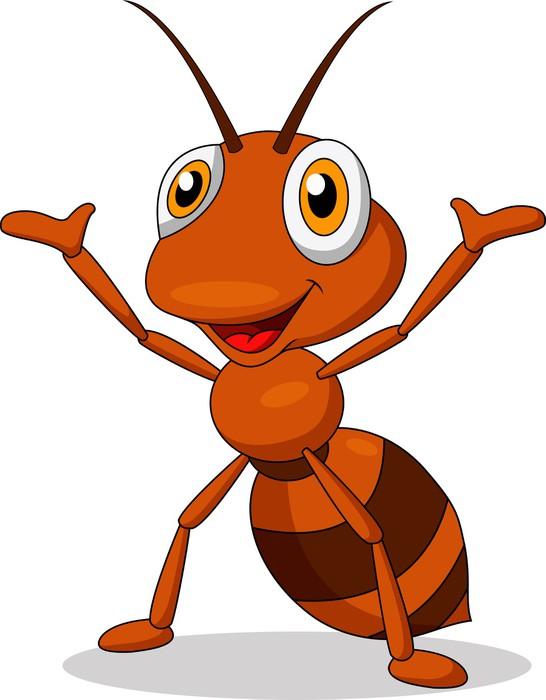 La hormiga investigadora