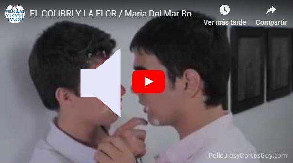 CLIC PARA VER VIDEO El Colibri y La Flor - CORTO - Colombia - 2013