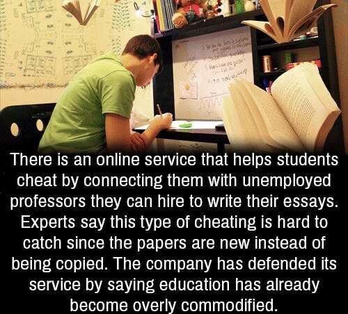 Wtf is Education has become overly commodified